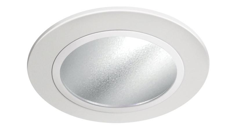 "2"" 550Lm LED Reflector Wall Wash"