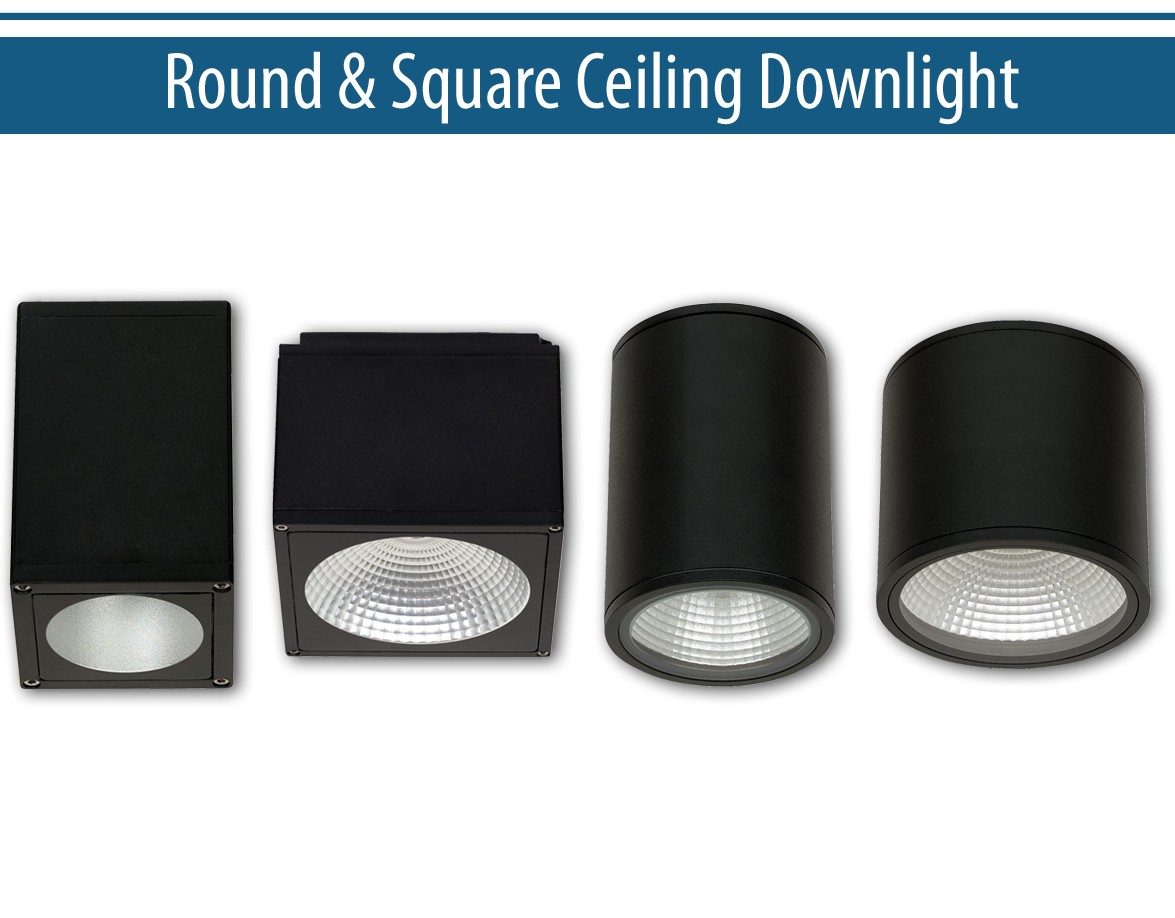Ceiling Mount Downlight Series