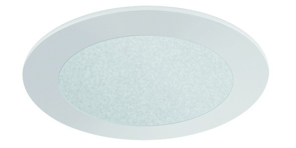 """4"""" FROSTED GLASS (480lm)"""