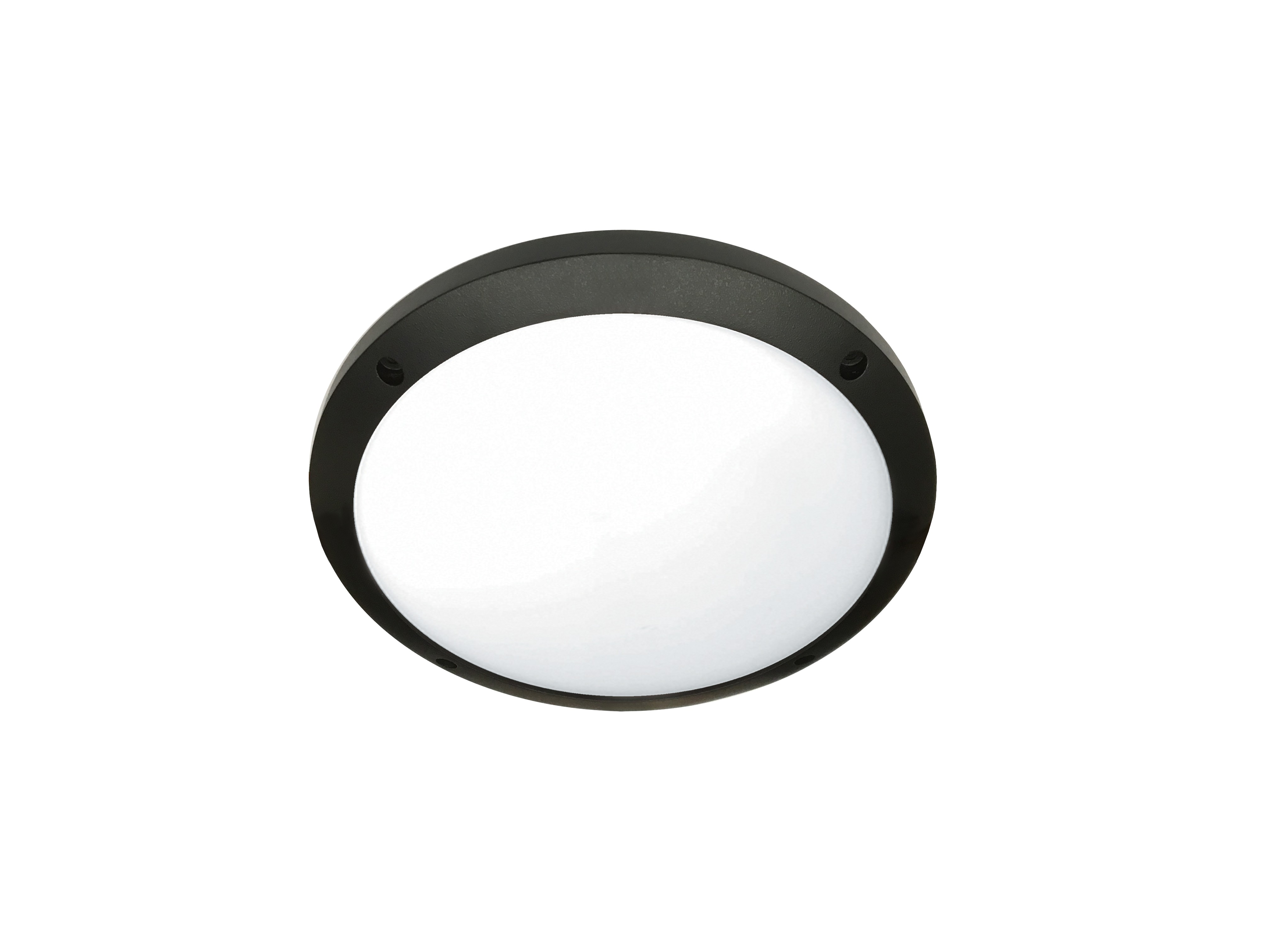 "10"" Round Open Face Ceiling Surface Luminaire"