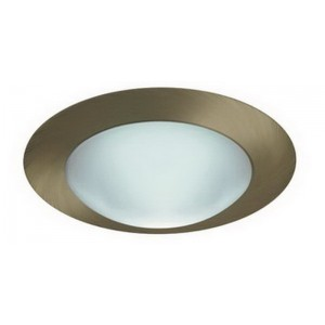 """6"""" CFL Frosted Dome w/ Reflector"""
