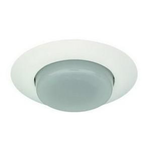 "6"" CFL Drop Opal Lens w/ Reflector"