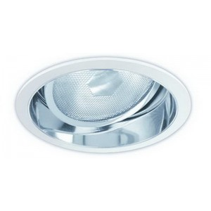 "6"" PAR30 Adjustable Reflector"