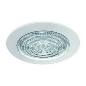 """4"""" CFL/A19 Fresnel Lens w/ Reflector"""