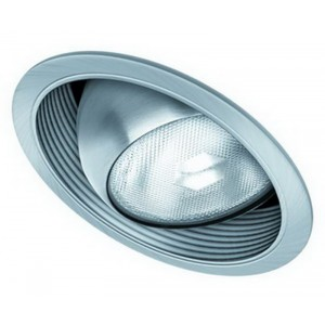 "6"" PAR30 Sloped Eyeball w/ Baffle"