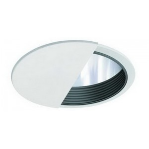"6"" PAR20/CFL/A19 Wall Wash w/ Reflector Baffle"