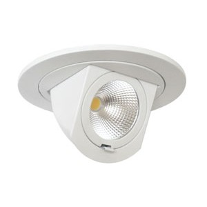 "4"" 700lm LED Adjustable Pull Down (Dimmable)"