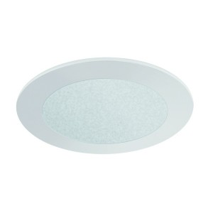 "4"" FROSTED GLASS (480lm)"