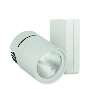 Apollo 60 - 6000 Lumen (2CCT/2NT)