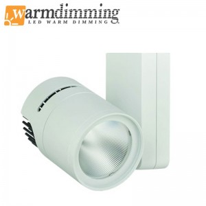 Apollo 30 - 2900 Lumen (3CCT/1NT)